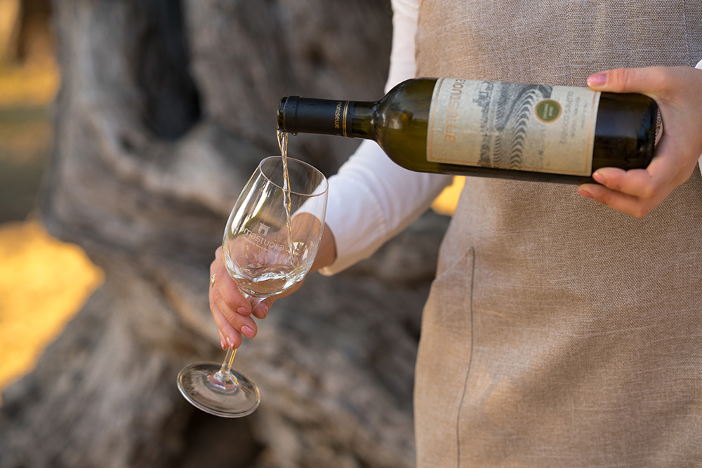 Masseria Amastuola: degustazione vini base