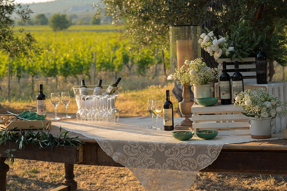 Masseria Amastuola: degustazione vini Top Experience
