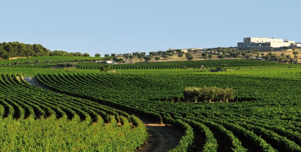 Offerte relax in Puglia